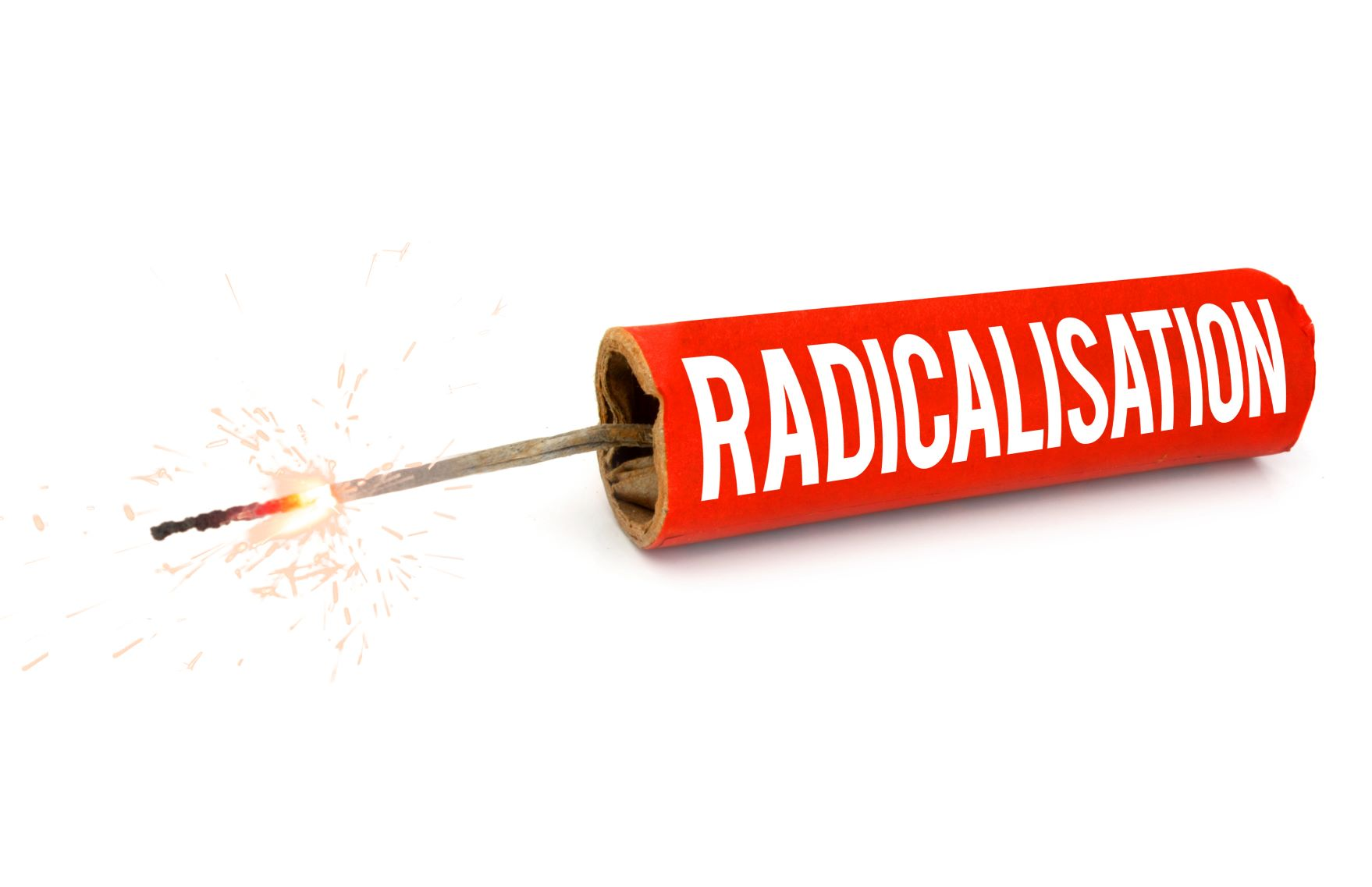 Preventing Radicalisation - e-Learning CPD - CSTF Aligned