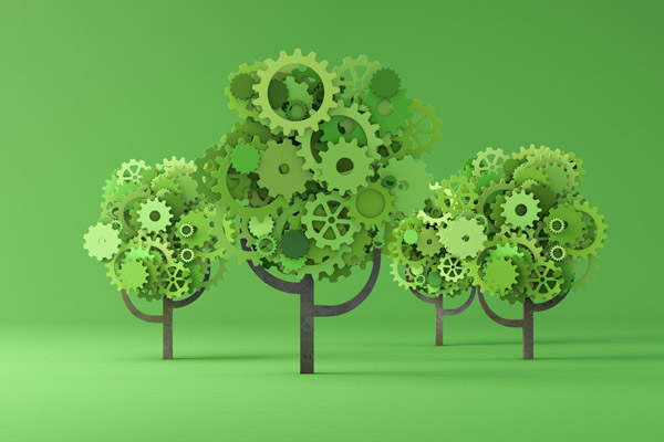 Environmental Sustainability - A Practical Approach to Greening Your Organisation