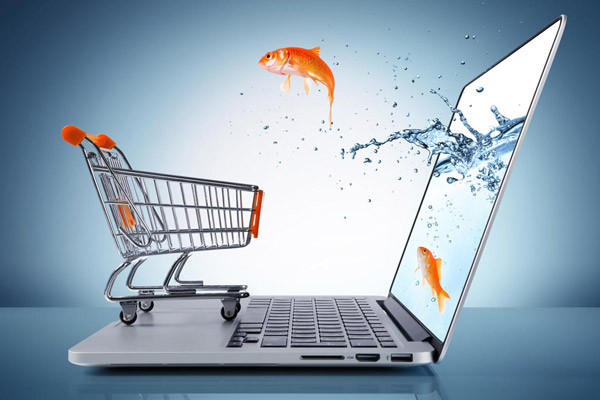 E-Commerce Management - Distance Learning CPD