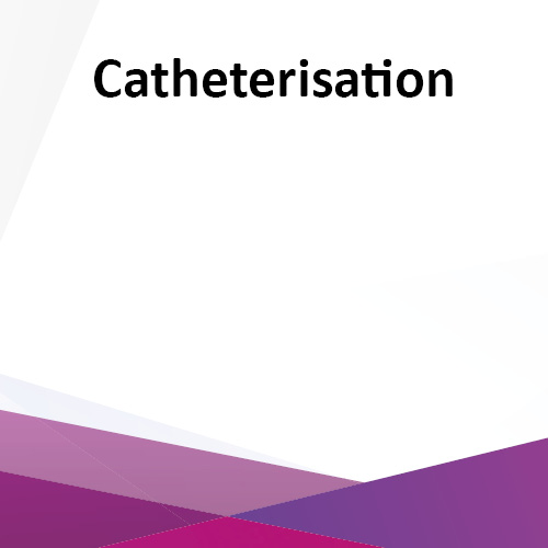 Catheterisation - e-Learning CPD