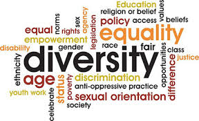 Equality and Diversity - e-Book