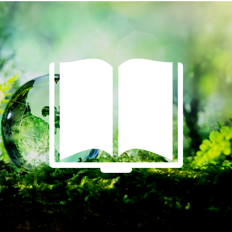 Encouraging Sustainability and Social Responsibility in Business - e-Book