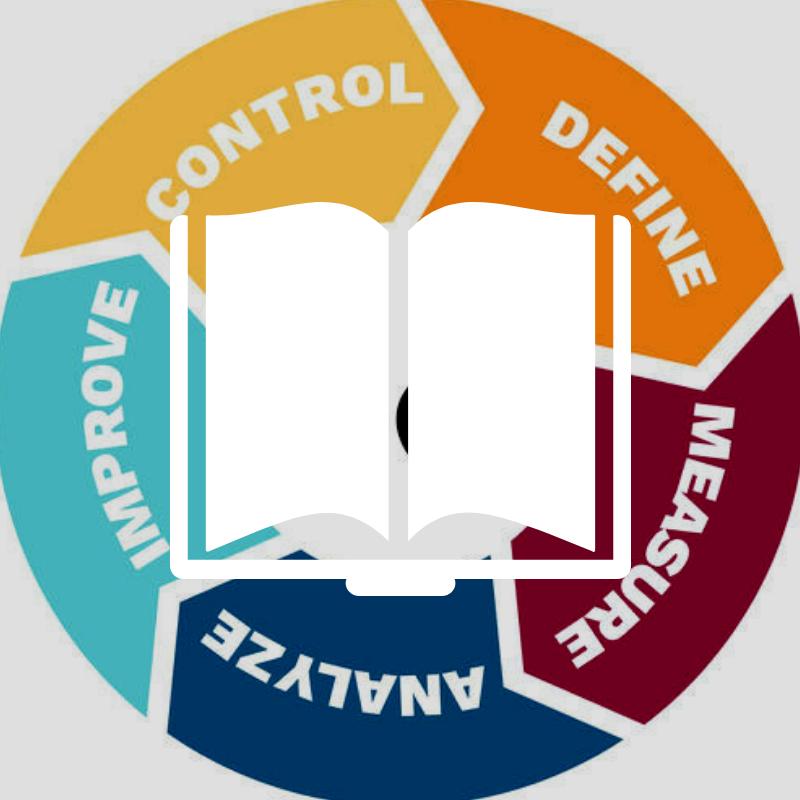 Six Sigma - Entering the Dojo - e-Book
