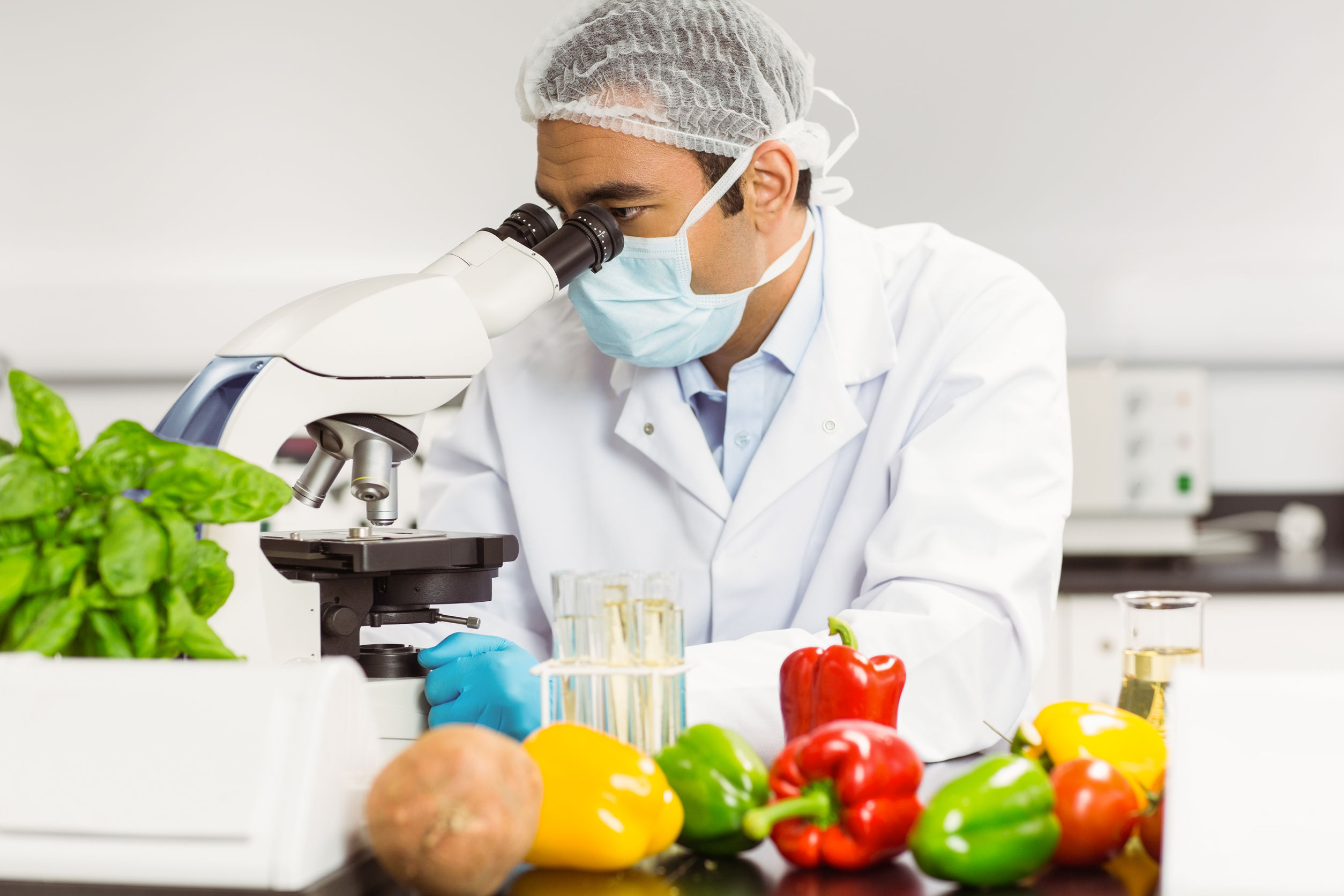 Food Safety Level 2 in Catering - e-Learning CPD